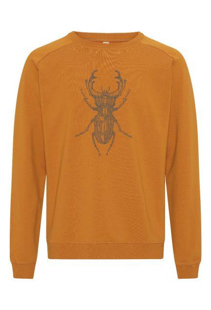 Sweatshirten herre – den i gylden med eghjort